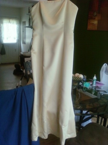 Prom Dress Before2