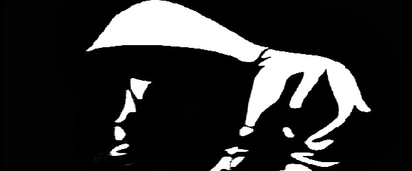 I'esha GaptootDiva discusses Justice for Trayvon Martin, zimmerman, not guilty, crime, descrimination